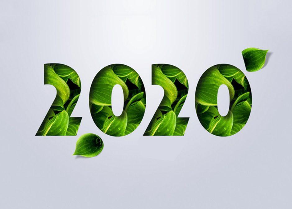 Jakie są Twojeekologiczne postanowienia noworoczne?